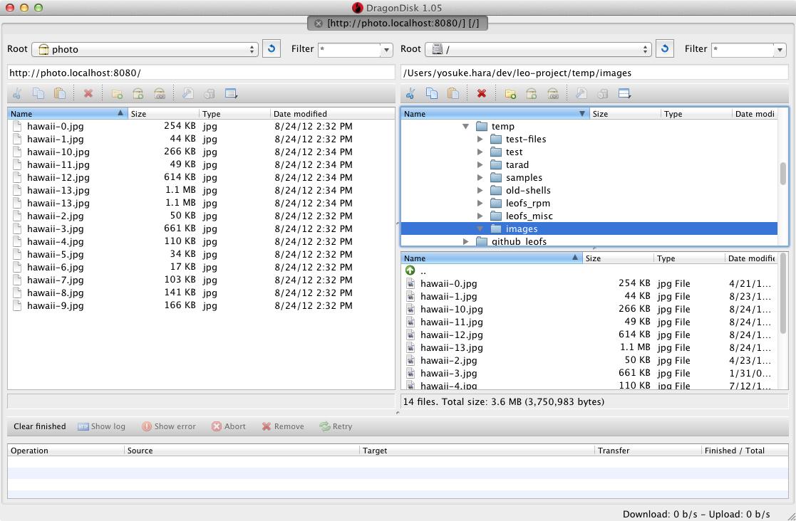 DragonDisk 1.05 Son Sürüm indir download yükle ücretsiz